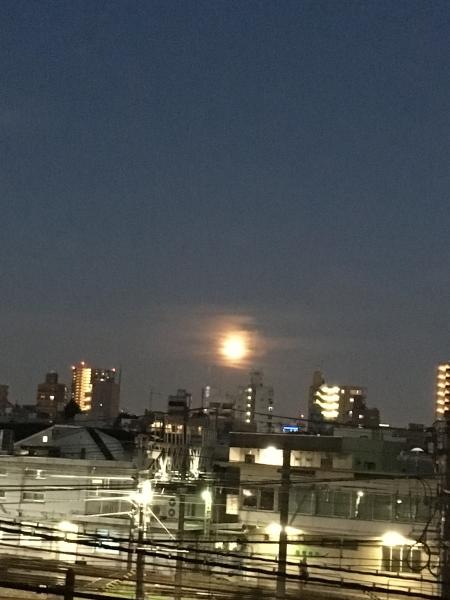盆の月2IMG_0801