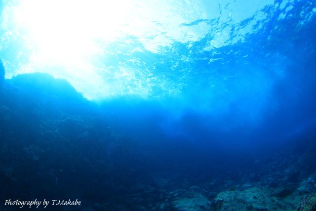 04-1★伊豆海洋公園「オクリダシ」の景観
