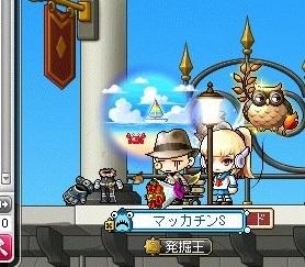 Maple_17502a.jpg