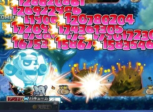 Maple_17542a.jpg