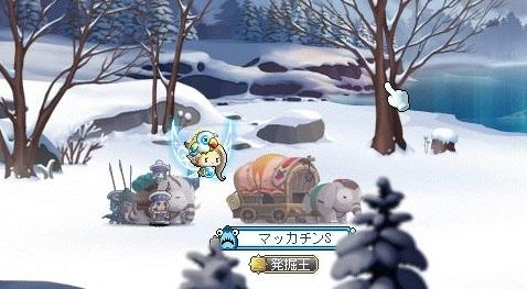 Maple_17549a.jpg