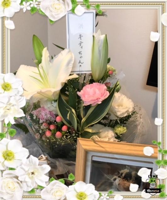 辻本さんからのお花
