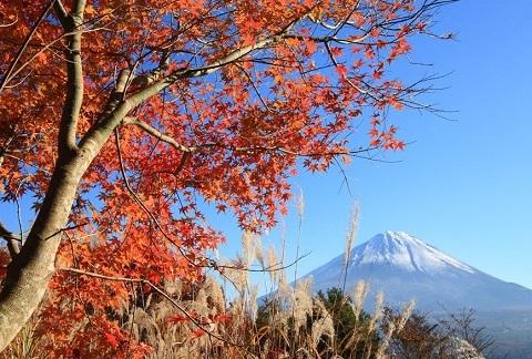 181005 秋の富士