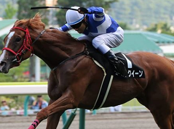 20180818manbaken-horse