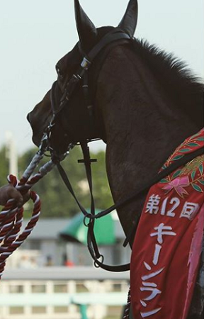 20180823manbaken-horse