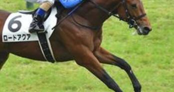 20180824manbaken-horse