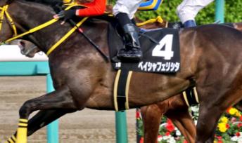 20180825manbaken-horse