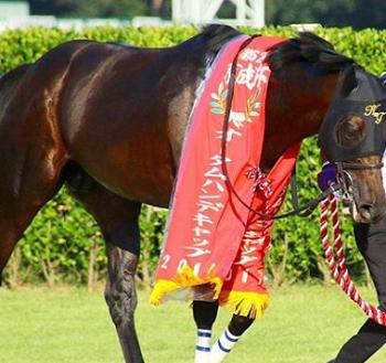 201809061manbaken-horse