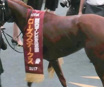 20180912manbaken-horse