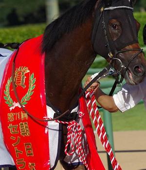 20180914manbaken-horse