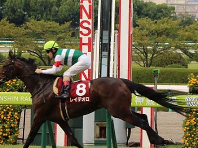 20180920manbaken-horse