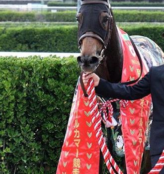20180921manbaken-horse