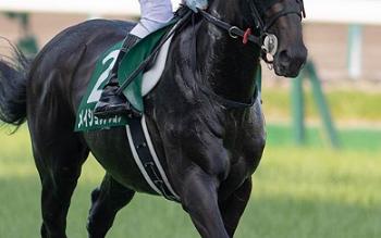 20180922manbaken-horse