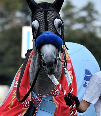 20180928manbaken-horse