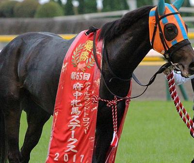 201810111manbaken-horse