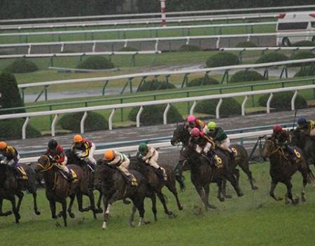 20181015manbaken-horse