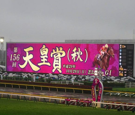 20181022manbaken-horse