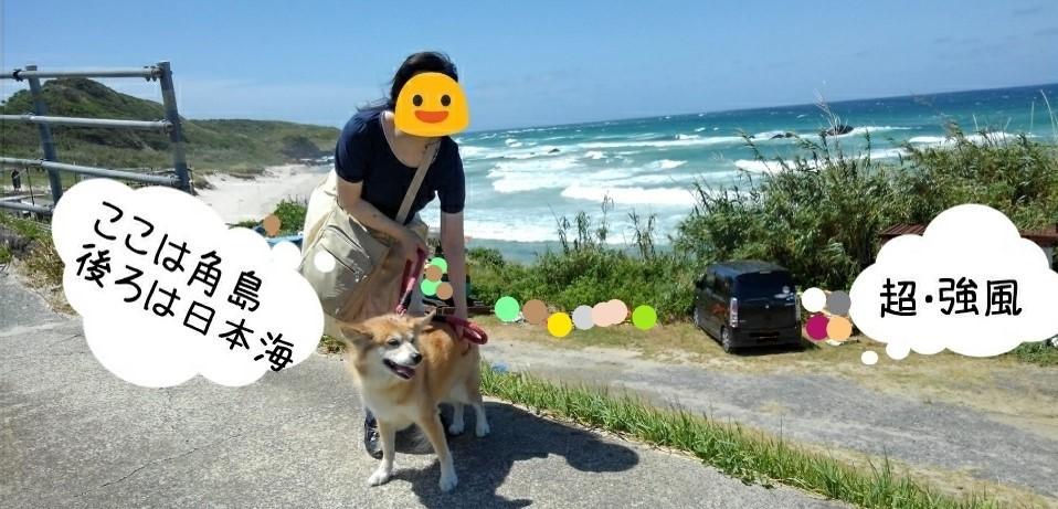 角島コバルトビーチ私ルー