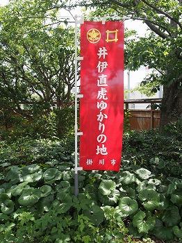 kakegawa16.jpg