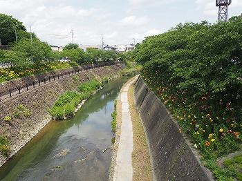 kakegawa29.jpg