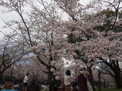 shizuoka47.jpg