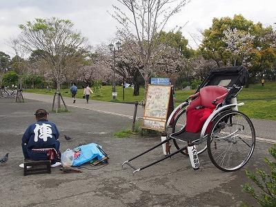shizuoka48.jpg