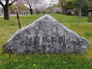 shizuoka52.jpg