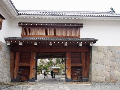 shizuoka55.jpg