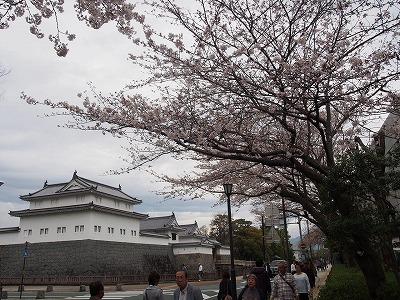 shizuoka64.jpg