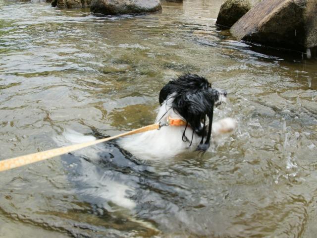 マリィの水遊び-5