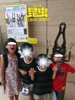 ブログ2 0917 昆虫展 (1)