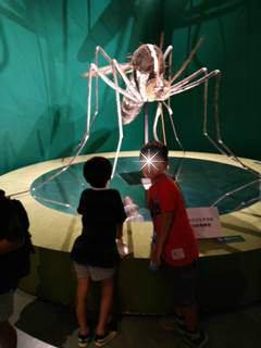 ブログ2 0917 昆虫展 (2)