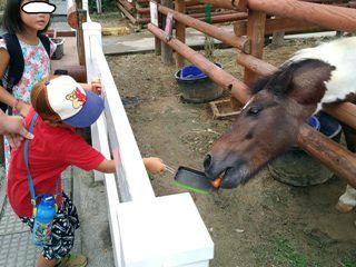 ブログ2 0924動物園 (1)