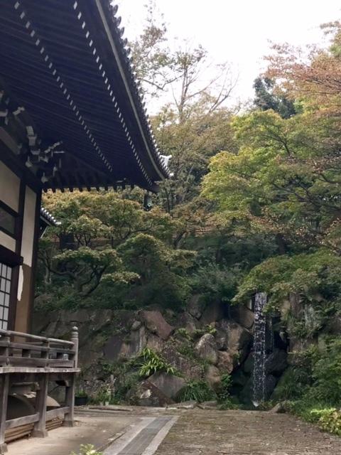 妙蓮寺の滝