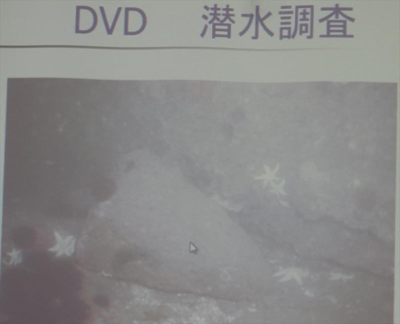 DSCN5716_R.jpg