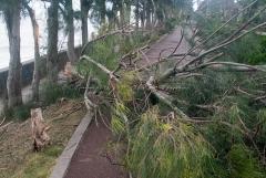 台風24号 被害 まとめ 画像