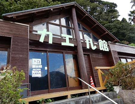 201809_Awashima_10.jpg