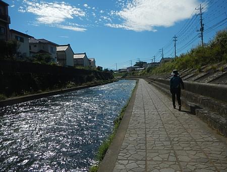 201810_Walking_uchiura_02.jpg