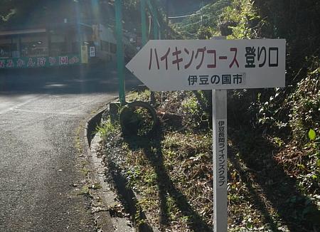 201810_Walking_uchiura_06.jpg