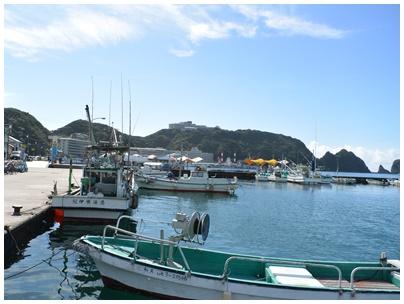 勝浦漁港5