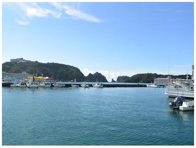勝浦漁港6