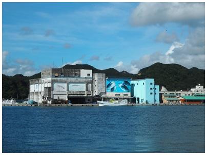 勝浦漁港7