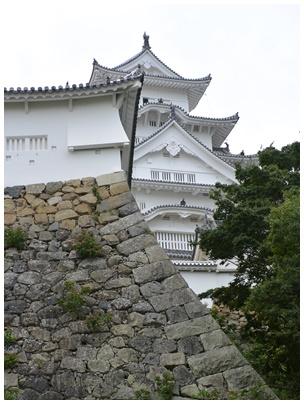 姫路城papa11