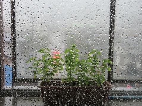 11 台風の位置が変わりベランダに雨が降り込む