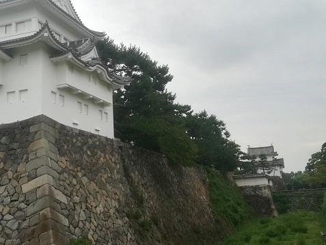 12 名古屋城の北側