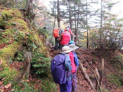 16 日光白根山への登山道