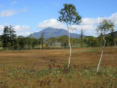 6 植物研究見本園 散策