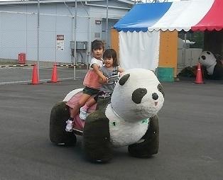 13 パンダに乗る