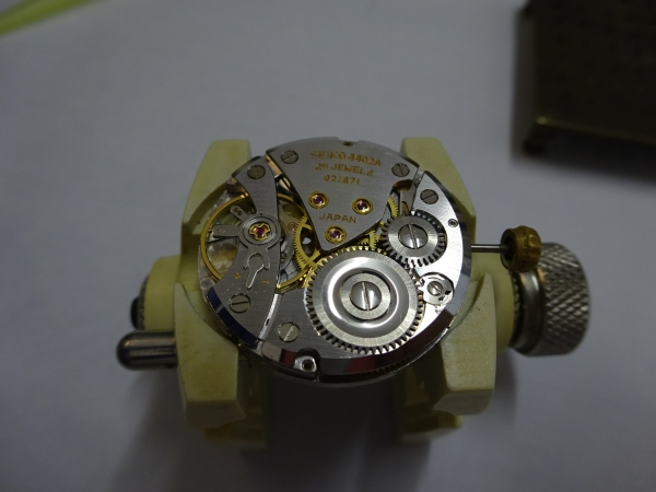 DSC03856.jpg