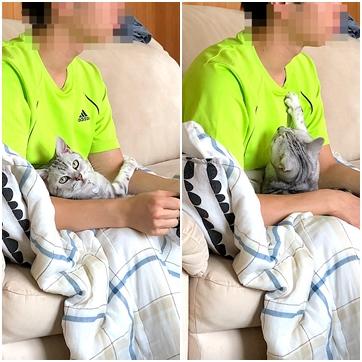 長男とネコ